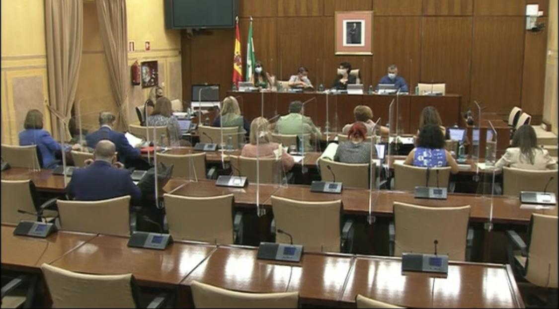Diario Sesiones Comisiones 263. Políticas para la protección de la infancia en Andalucía
