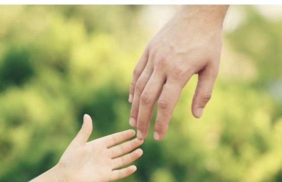 Adopciones fallidas: una realidad silenciada